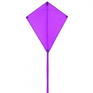 ECO: EDDY PURPLE 70CM 28""